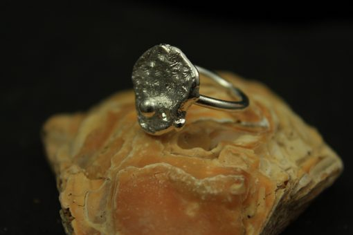 ring silber earth