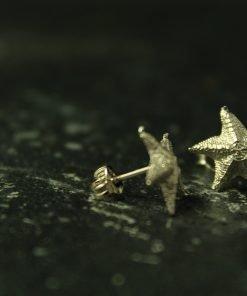 stern ohrringe